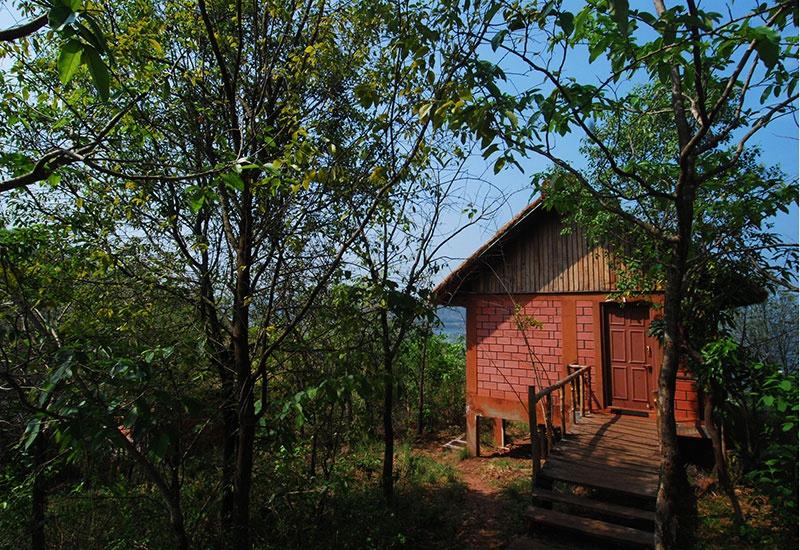 River Tern Lodge Day Tour