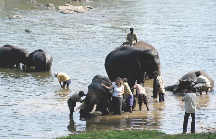 Dubare Elephant Camp, Kushalnagar, Coorg