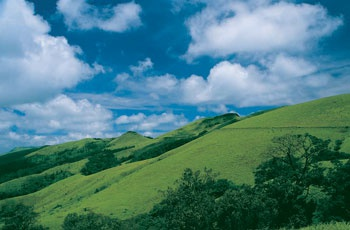 Chikmagalur Package I