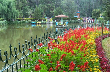 Coorg Ooty and Mysore Tour Package