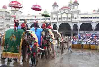 Dasara & Wildlife Tour