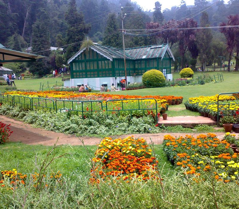 Botanical Gardens, Ooty