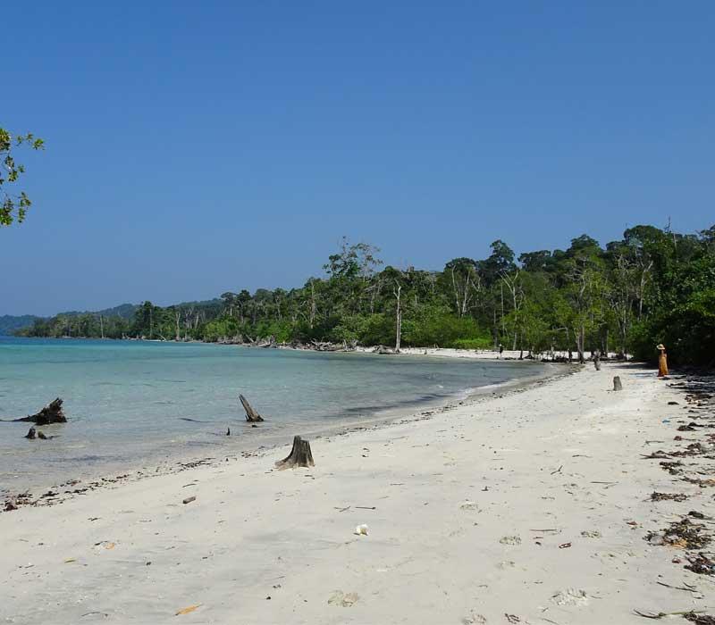 Beaches Havelock