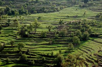 Romantic Uttaranchal