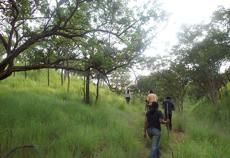 bheemeshwari advanture camp