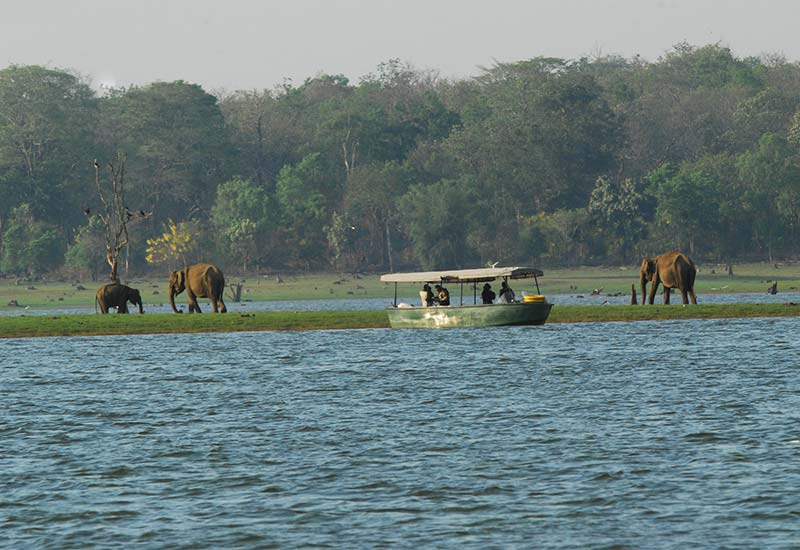 Boat Ride at Kabini River Lodge