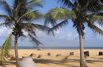 negombo srilanka